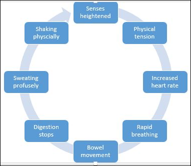 stress-cycle-7