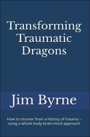 Hardback Trauma book, cover1